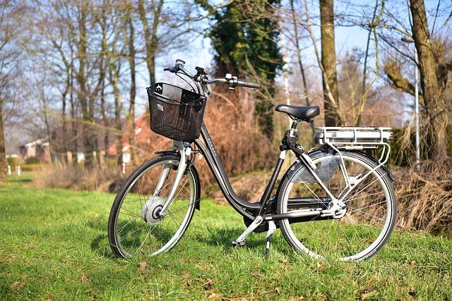 elektrische dames fiets